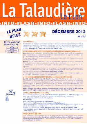 Infoflash 210